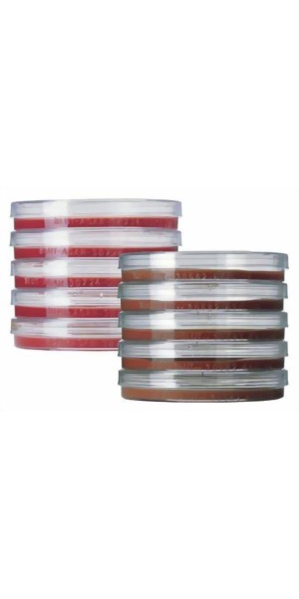 Nutriplate Nährboden für die Mikrobiologie, verschiedene Ausführungen (20 Nährböden)